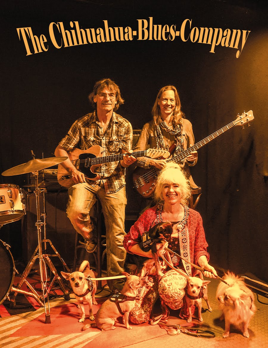 Chihuahua Blues Company
